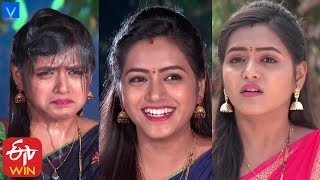 All in One Super Entertainer Promo | 18th January 2020 | Naalugu Sthambalata,Manasu Mamatha - MALLEMALATV