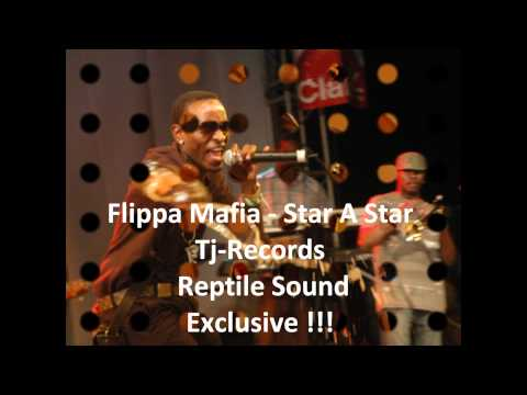 Flippa Mafia   Star A Star  Tj Records  Reptile Sound Exclusive !!!