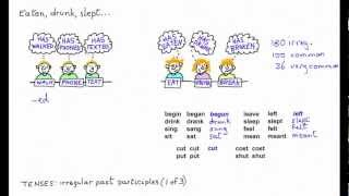 Past Participles of Irregular Verbs 1, has begun, has sung