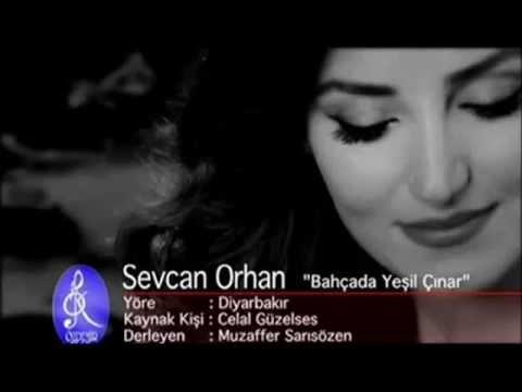 Sevcan Orhan = Bahçada Yeşil Çınar 2013