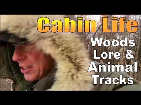 CABIN LIFE,  WOODS LORE and ANIMAL TRACKS.