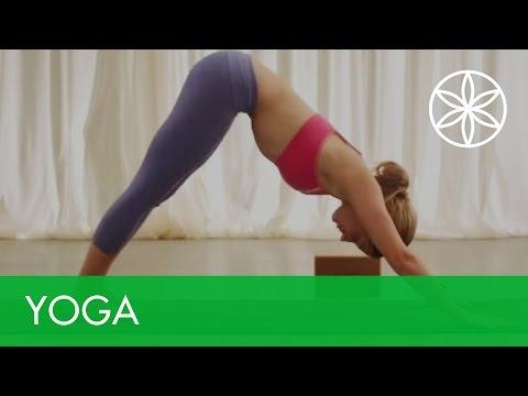 Aim True Yoga