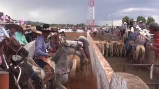 Coleaderos en Progreso de Alfonso Medina (Colonia Progreso) (Río Grande, Zacatecas)