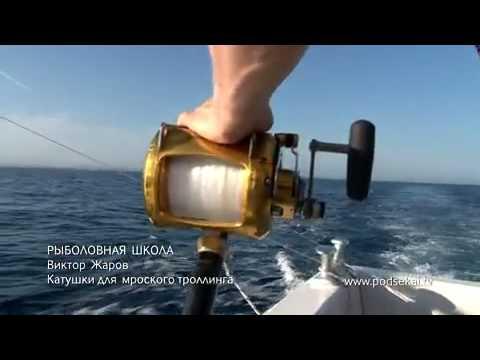 Подсекай ТВ – Для рыбаков и охотников