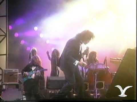 Festival de Viña 1991, Jose Luis Rodriguez, Pavo real
