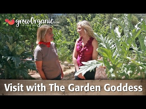 Peaceful Valley Visits The Garden Goddesses