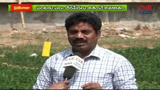 వేరుశనగ సాగు    Krushi vignana kendram agricultural scientist   Srikakulam   Raithe raju   CVR - CVRNEWSOFFICIAL