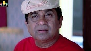 Raju Maharaju Movie Comedy Scenes Back to Back | Telugu Movie Comedy | Sri Balaji Video - SRIBALAJIMOVIES