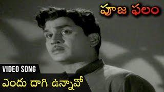 Endu Daagi Unnavo Video Song | Pooja Phalam Movie | Nageshwara Rao | Savithri | Jamuna - RAJSHRITELUGU