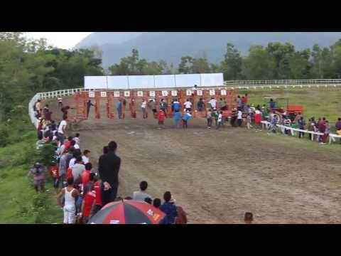 Kuda Stoner. Pacuan Kuda Bank Nagari Sawahlunto Derby'13.