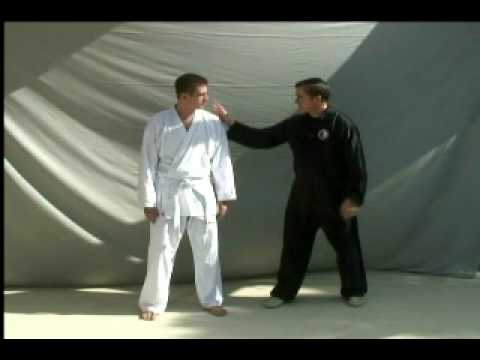 Body Mechanics for Tai Chi, Hsing-I and Bagua - Part 1