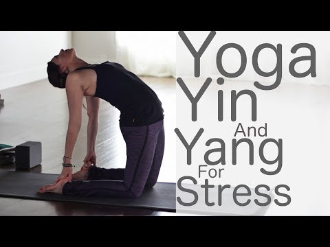 Yoga For Stress Relief: Yin and Yang with Lesley Fightmaster