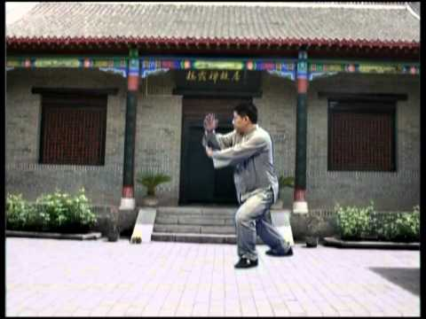 Master James Fu's 28 Forms - Authentic Yang Tai Chi Chuan - Proficiency Demo