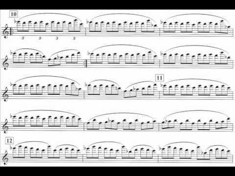Glass, Philip mvt2 violin concerto