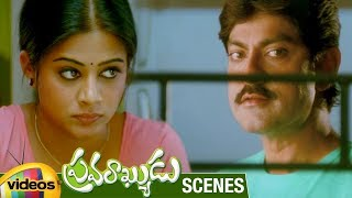 Jagapathi Babu Trolls Priyamani | Pravarakyudu Movie Scenes | Sunil | Mango Videos - MANGOVIDEOS