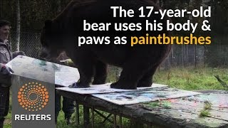 Finnish gallery opens exhibition by Juuso the bear - REUTERSVIDEO