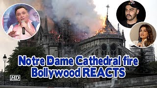 Notre Dame Cathedral fire   History in Ashes- Bollywood REACTS - BOLLYWOODCOUNTRY
