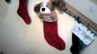 Schawn's Christmas stocking.3gp view on youtube.com tube online.