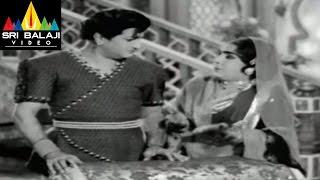 Alibaba 40 Dongalu Movie NTR and Suryakantham Scene || NTR, Jaya Lalitha - SRIBALAJIMOVIES