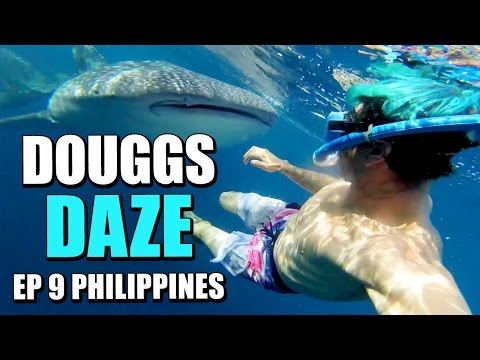 DIVING WITH SHARKS IN THE PHILIPPINES | DOUGGS DAZE | EP9