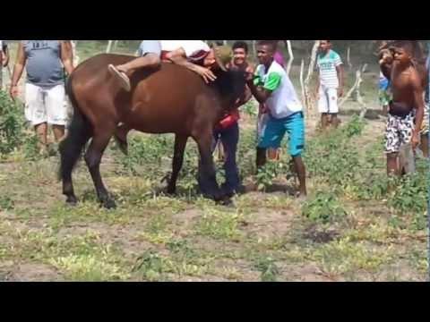 Amansando Cavalo | Santa Barbara-BA