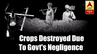 Master Stroke: Every year crops, vegetables in India get destroyed due to govt's negligenc - ABPNEWSTV