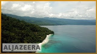 🌏 Race to save the rainforests in Asia-Pacific | Al Jazeera English - ALJAZEERAENGLISH