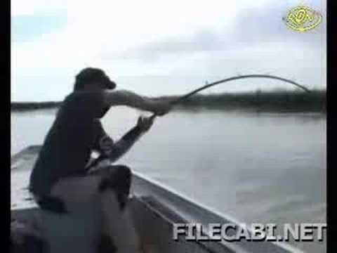 Pescaria de Peixe gigante