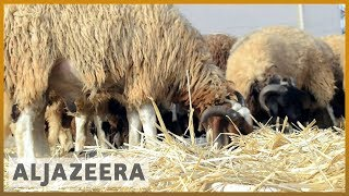 🇱🇾 Libya economic woes overshadow Eid al-Adha celebration | Al Jazeera English - ALJAZEERAENGLISH