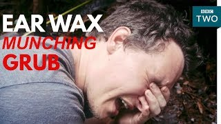 Jungle grub eats ear wax! | My Year with the Tribe - BBC Two - BBC