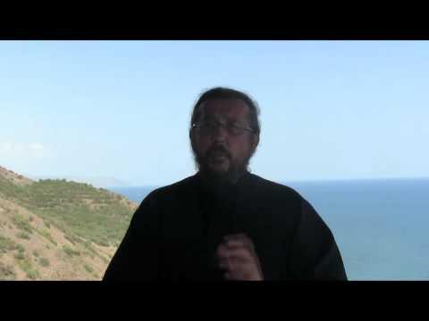 Как христианство объясняет существования аппендицита. Священник Игорь Сильченков