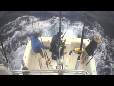 Marlin fishing on CABOLERO