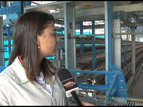 Aqui deu certo: produção de ovos de codorna - Programa Revista do Campo