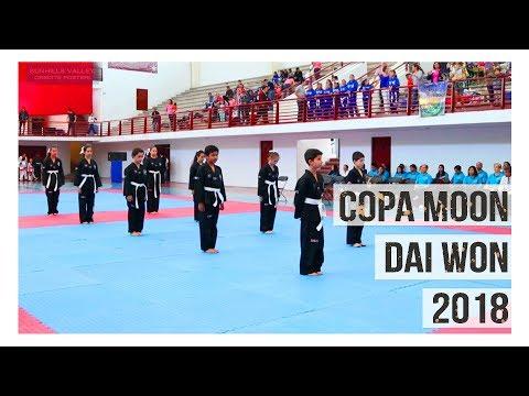 Copa Moon Dai Won 2018