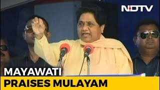 """Mulayam Singh Not Fake Backward Leader Like PM"": Mayawati At Gathbandhan Rally - NDTV"