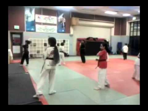 Scotty,s taekwondo form review