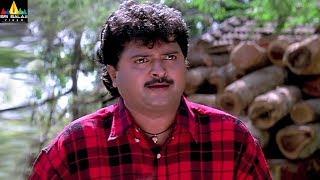 Pavitra Prema Movie Comedy Scenes Back to Back | Telugu Movie Comedy | Sri Balaji Video - SRIBALAJIMOVIES