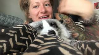 Malachi getting morning cuddles