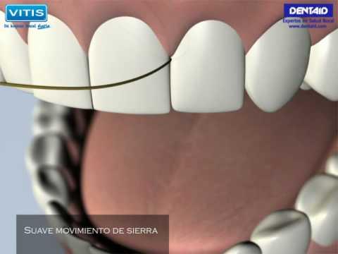 Tu higiene bucal diaria