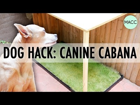 Dog Hack: DIY Urban Backyard Cabana