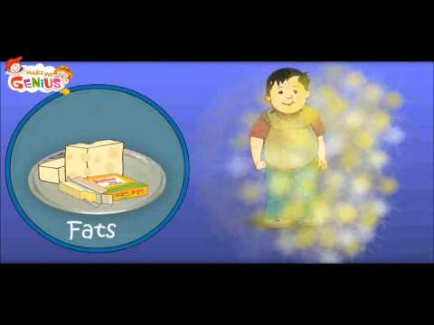 Nutrition Table Video for Kids-Food Pyramid -School Education Video