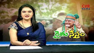 రైతు నేస్తం : Chandranna Rythu Kshetram Scheme | Agricultural is Main part of Andhra Pradesh | CVR - CVRNEWSOFFICIAL