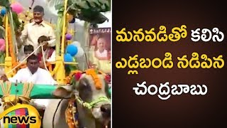 Chandrababu Naidu Sankranthi Celebrations at Naravaripalli With His Grand Son | AP CM Latest News - MANGONEWS