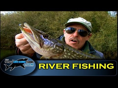 Beginners River Fishing Tips (Part1) - Swim Selection in Small Rivers - TAFishing