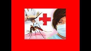 Delhi: Over 700 cases in 10 days, swine flu figure now at 2,278 - TIMESOFINDIACHANNEL