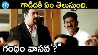 గాడిదకి ఏం తెలుస్తుంది గంధం వాసన ? || Anna Movie Scenes || Vijay, Amala Paul - IDREAMMOVIES