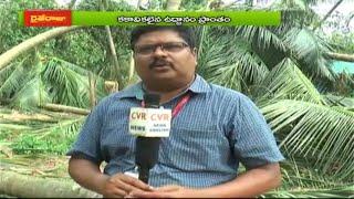 తిత్లీతో కకా వికలం l తిత్లీతుఫాన్ తో భారీగా నష్టపోయిన కొబ్బరి రైతులు l RaitheRaju | CVR NEWS - CVRNEWSOFFICIAL