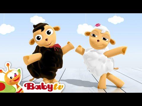 Ovejas que bailan cha-cha-cha  - BabyTV Español