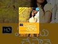 Ye Maaya Chesave (2010) - Full Length Telugu Film - Naga Chaitanya - Samantha- Krishnudu