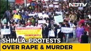 Accused In Shimla Rape Case Killed In Custody - NDTV